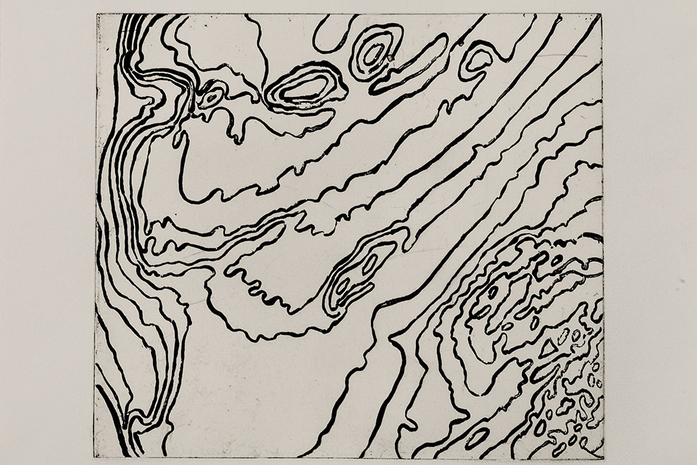 Line etching by Beth Ganz